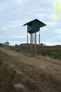 Hickory Mound Florida Bat Conservancy