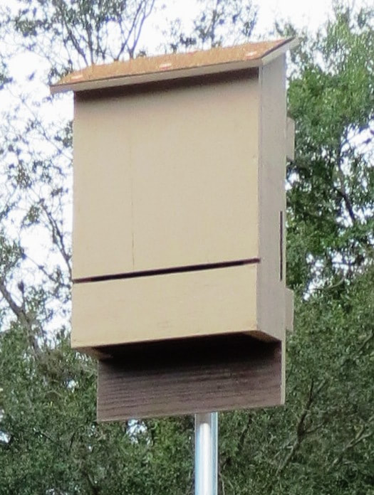 Bat House Plans Community Information Builders
